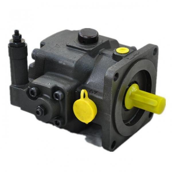 NACHI IPH-55B IPH Double Gear Pump #3 image