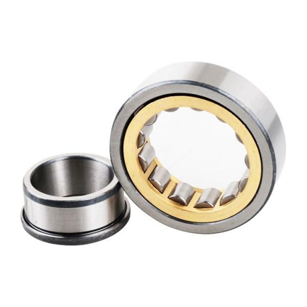 3.74 Inch   95 Millimeter x 7.874 Inch   200 Millimeter x 1.772 Inch   45 Millimeter  SKF N 319 ECP/C3  Cylindrical Roller Bearings #3 image